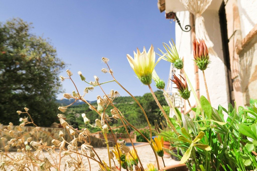 Yoga Retreat Spanje: Take time to make your soul happy